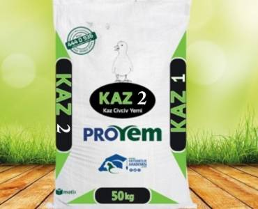 Kaz 2 Yemi